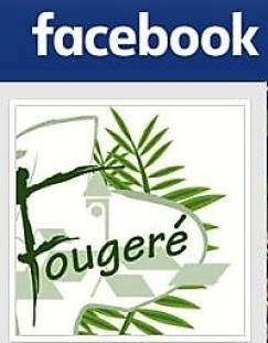 La Commune de Fougeré sur Facebook (2017)